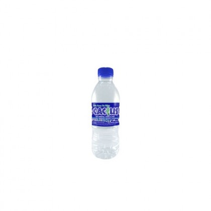 Cactus Natural Mineral Water Water 24x350ml